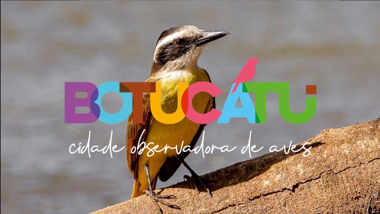 Botucatu aposta na observação de aves como novo atrativo para o turismo