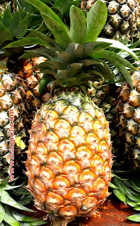 Hmarkhawlien Pineapple