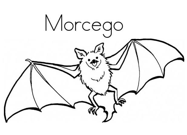 blog de geografia morcego desenho para imprimir e colorir