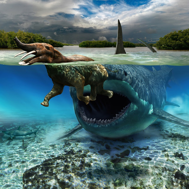 Megalodon and Platybelodon
