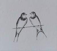 Pair of Swallows stipple illustration by Rachel M Scott