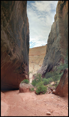 The Narrows Section of Grand Wash Capital Reef Utah