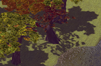 Tourney edge scenery trees
