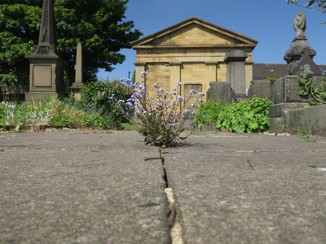 Chapel and path at Lister Lane Cemetery, Halifax, Calderdale, UK.