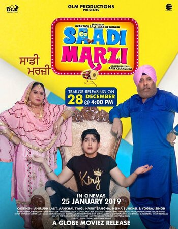 Saadi Marzi (2019) Punjabi 480p HDRip x264 350MB ESubs Movie Download