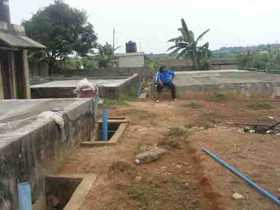 fish pond business plan in nigeria africa