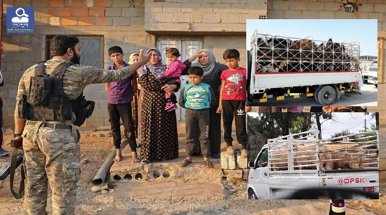 """بمشاركة مرتزقة """"الجيش الوطني السوري"""" تركيا تنقل المواشي من ريف سري كانية لاراضيها مقابل هذا الشيء"""