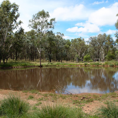 eight acres: where should I start with a new property?
