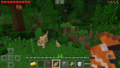 Minecraft screenshot 0
