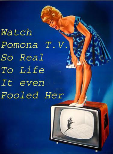 Make sure you watch Pomona T.V.