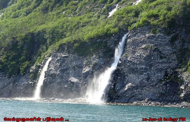 Rookery Falls Whittier Alaska