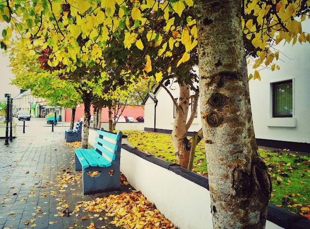 bench, road, Galway, autumn