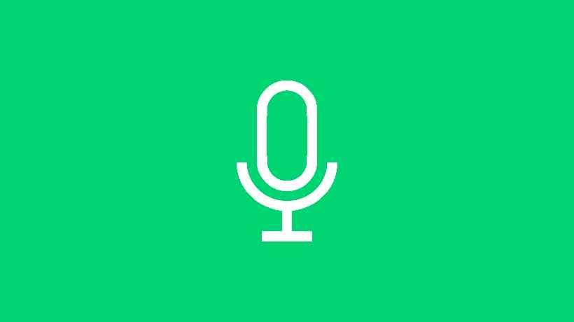 voice note wa