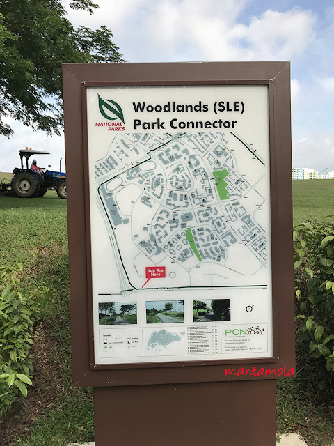 Woodlands Park Connector