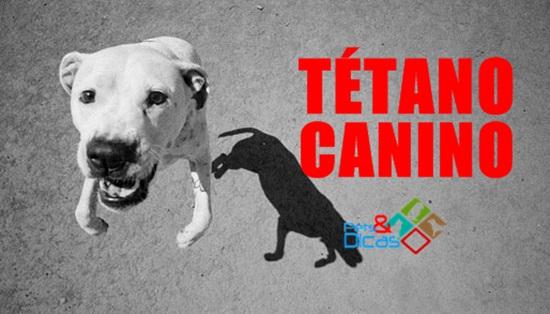 Tratamento tétano canino