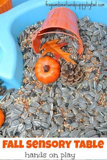 fall sensory bin, seed sensory bin, autumn sensory bin,