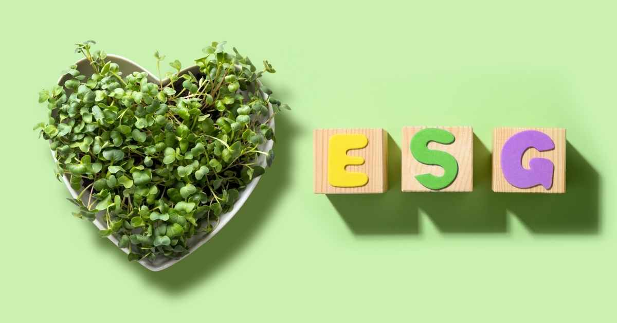 What Is ESG Investment Why It's Expanding In The World - Moniedism
