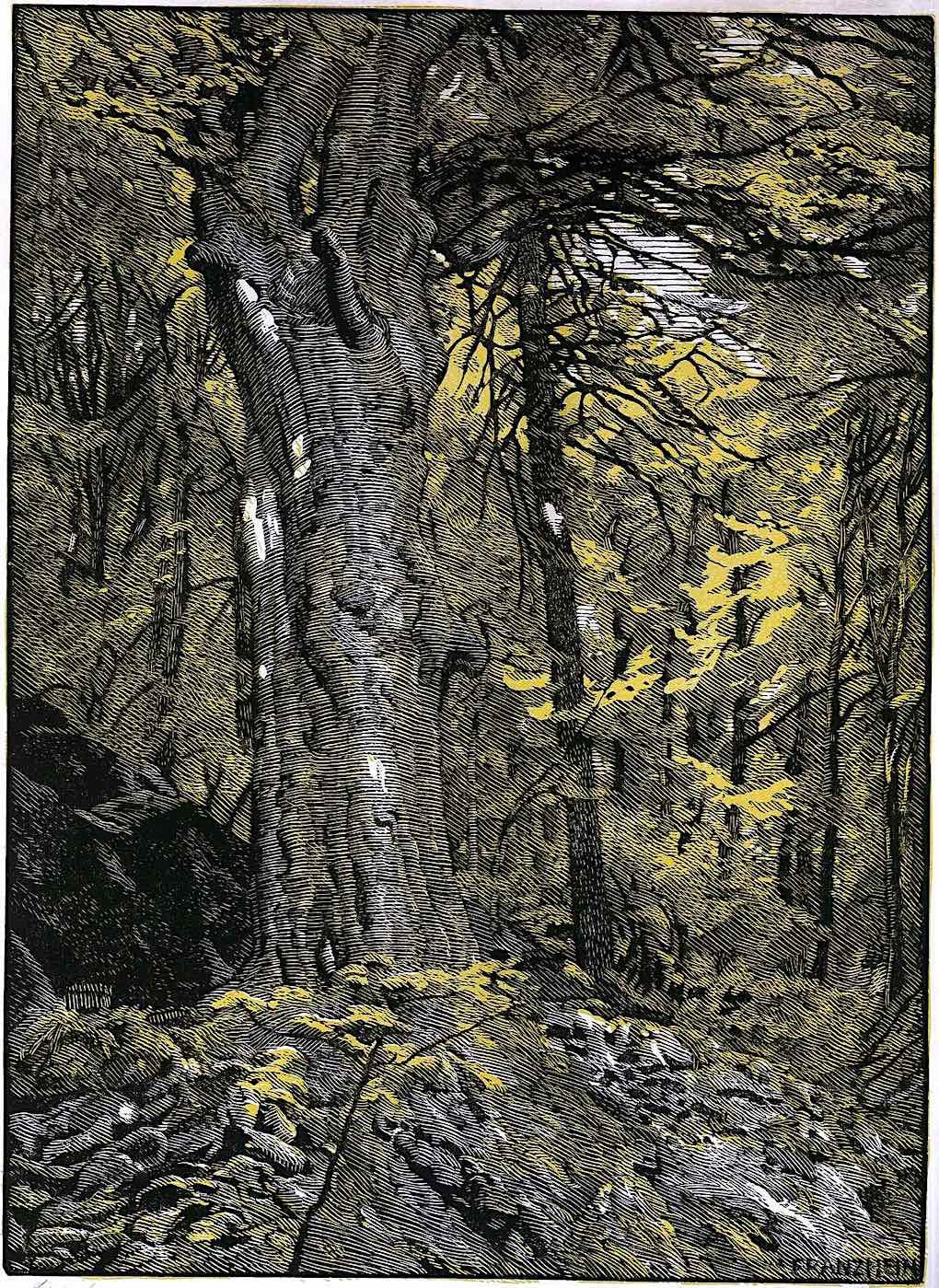 Franz Hein art, a tree trunk in a forest