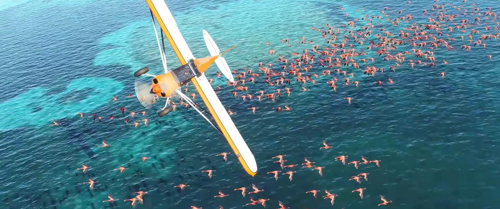 IndiaFoxtEcho Visual Simulations