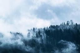 Musim Hujan masih mau naik gunung? Baca ini dulu deh sebelum nyesel!