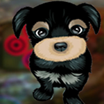 Games4King Modest Puppy …