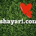 Love Shayari in Hindi |  150+ Love shayari with image