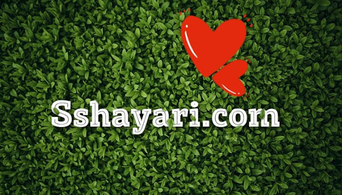 Love Shayari in Hindi |  150+ Love shayari with image
