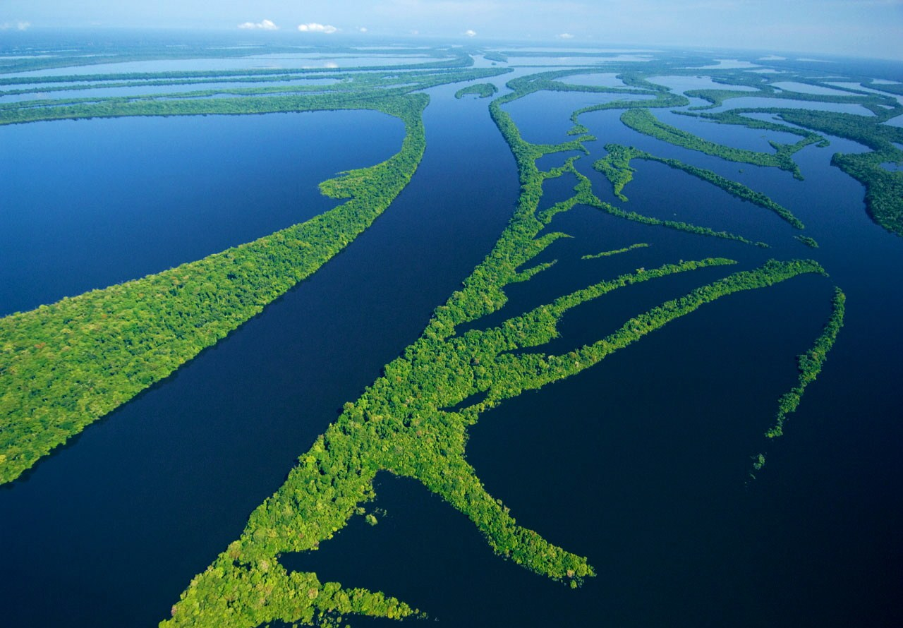 Anavilhanas - Amazônia