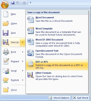 Save As PDF in Microsoft Office Word, Excel and Powerpoint 2007