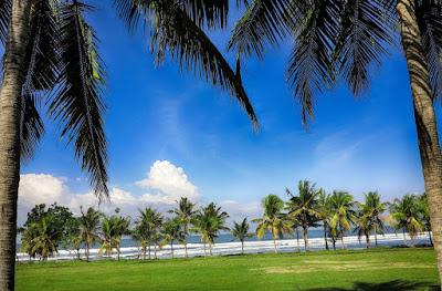 Objek Wisata Pantai Medewi juga mempunyai ombak yang tidak kalah menantang untuk Pantai Medewi, Pantai Menawan Bagi Para Peselancar