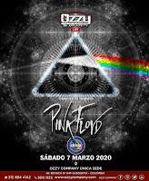 Concierto Tributo Pink Floyd