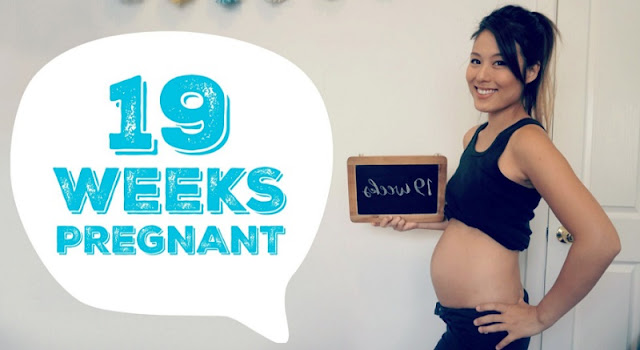 19-Weeks-Pregnant-Weight-Gain