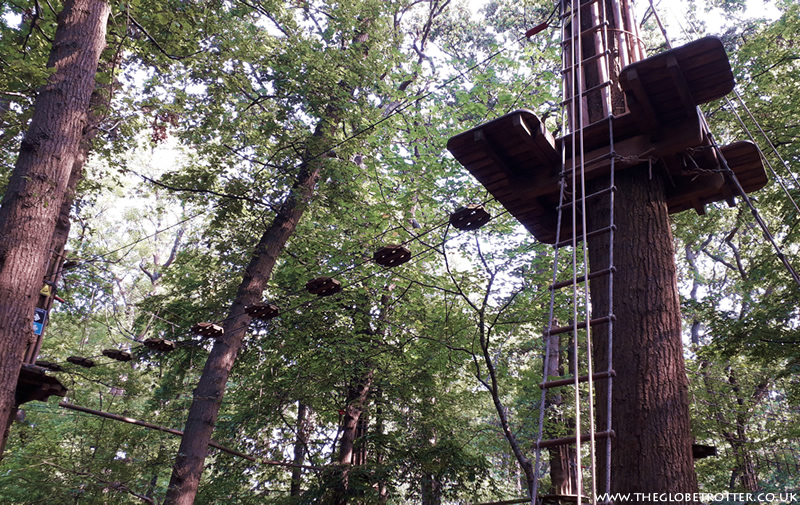 Tree Top Challenge at Go Ape, Cockfosters