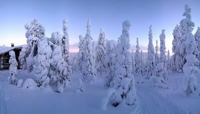paesaggio inverno lapponia
