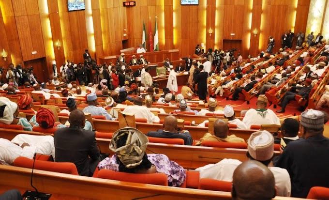 Senate suspends plenary over lawmakers' death