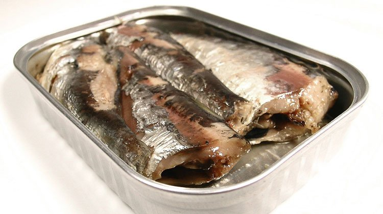 Canned sardines vs canned tuna which one you should for Is tuna fish good for you