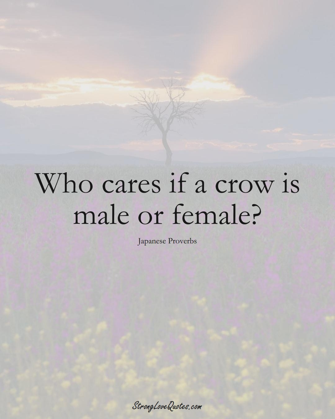 Who cares if a crow is male or female? (Japanese Sayings);  #AsianSayings