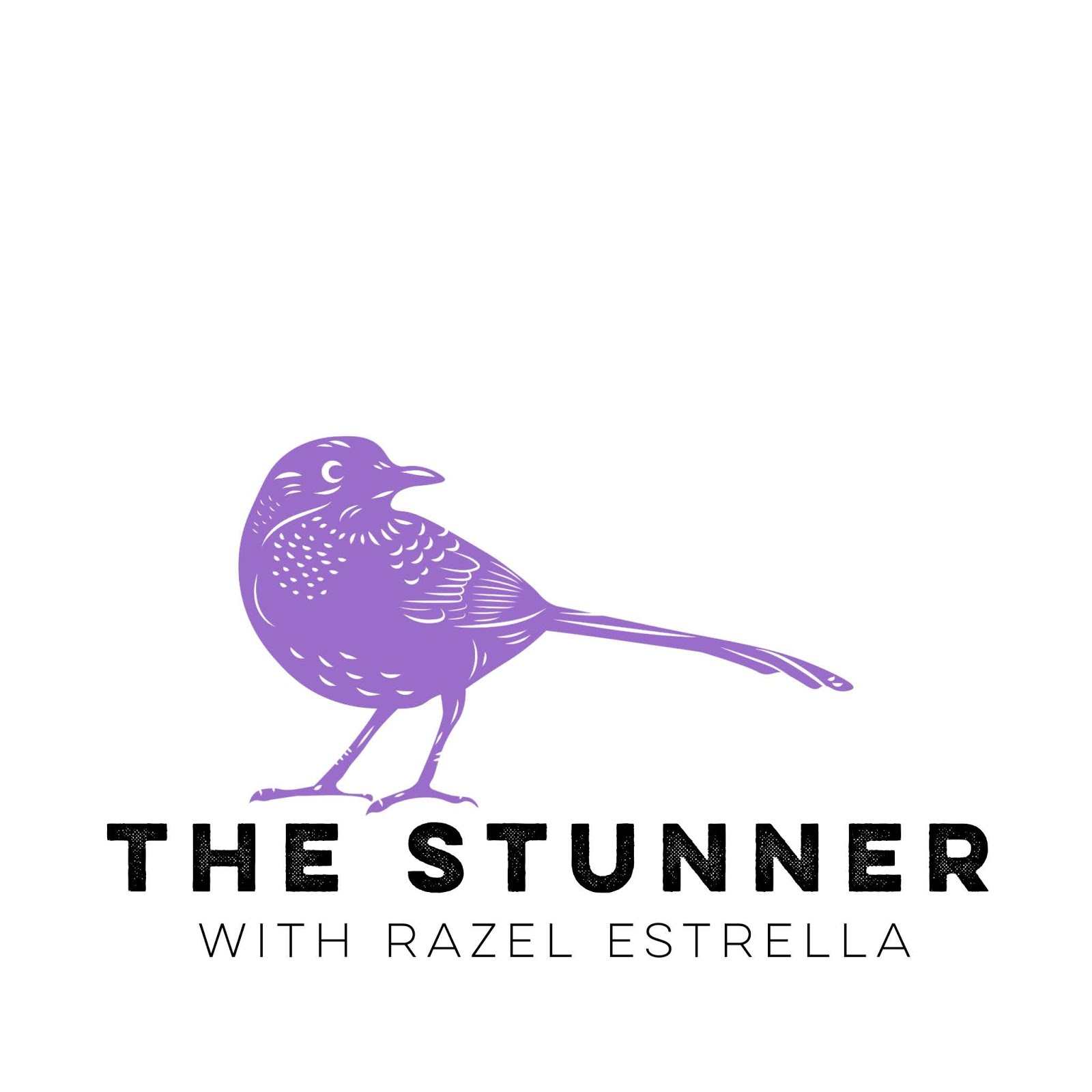The Stunner Podcast