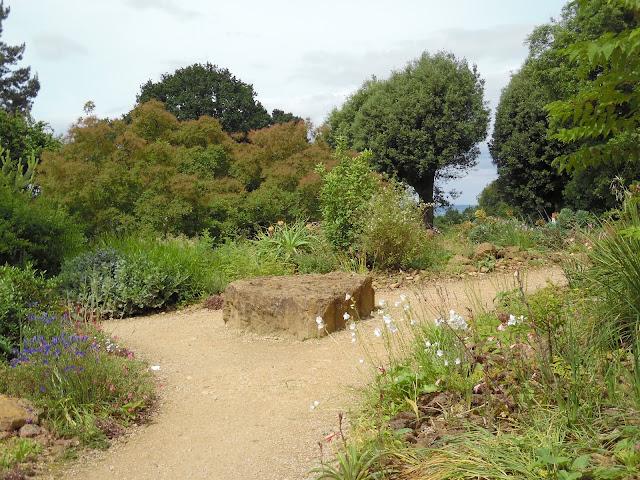 suchy ogród, ogród angielski