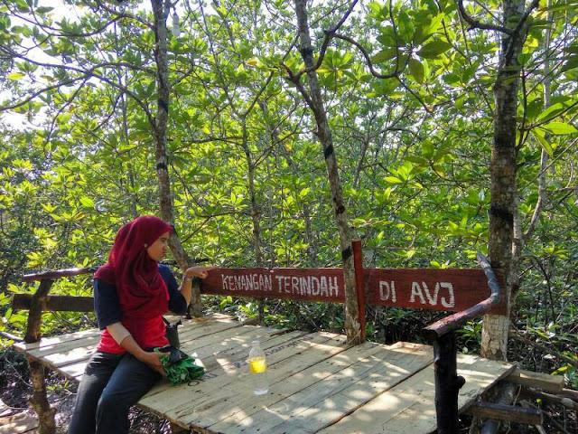 Spot Fot AVJ Mangrove Nongsa Batam