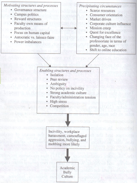 Figure 1. Conceptual Framework of Bullying by Twale and de Luca (2008), based on Salin (2003)