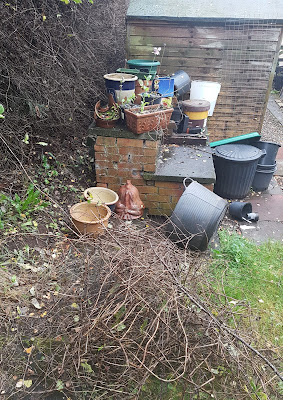 tidying the outdoor potting area