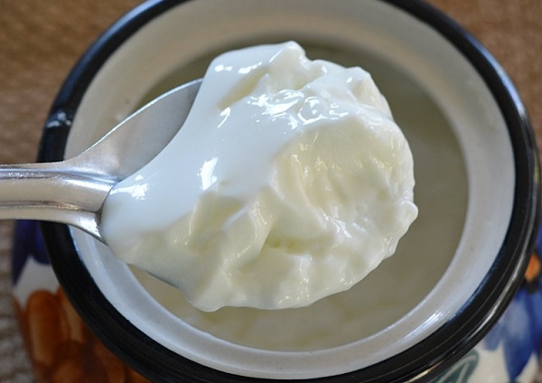 What are the benefits of curd for all