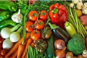ما هي أهمية التغذية؟