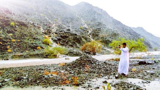 وادي القور