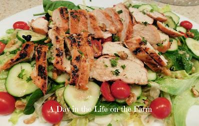 Grilled Chicken Salad with Walnut Vinaigrette
