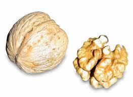 la nuez es un alimento saludable rico en omega3