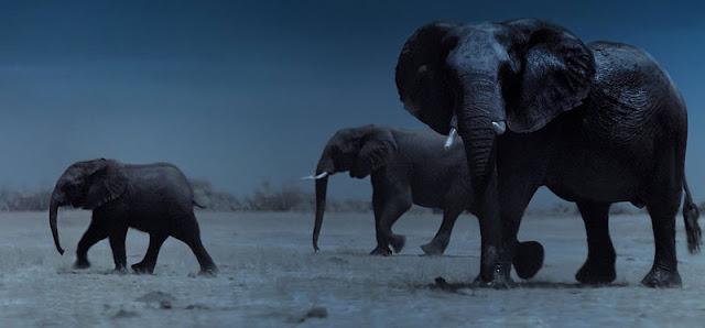 Reseña de 'La Tierra de Noche' (Night On Earth) de Netflix