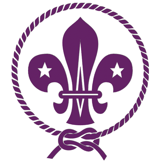 "Logo WOSM png - World Organization Scout's Of Movement"" (WOSM)"