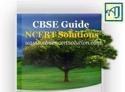 CBSE Guide NCERT Solution - www.cbsencertsolution.com